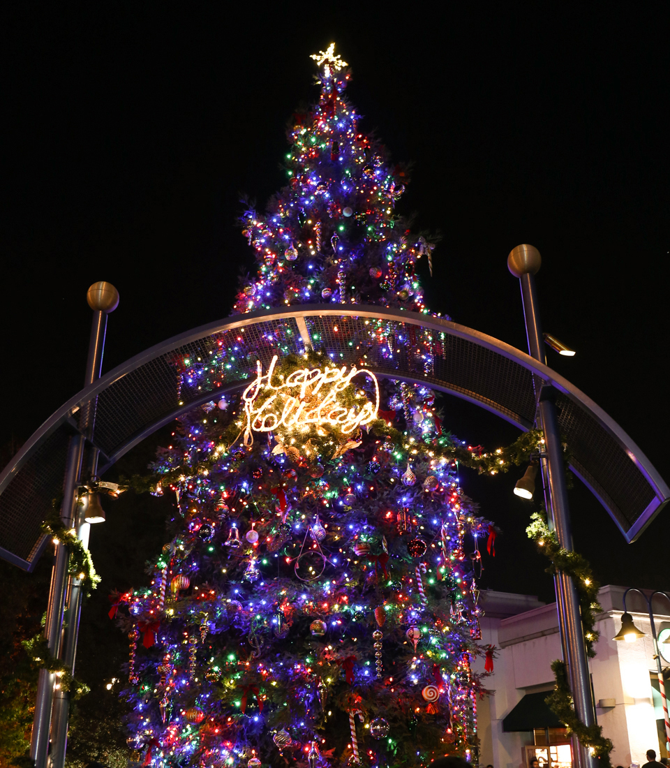 Tree_Lighting